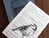 Blaumeise Druck, Vogel-Druck, Song Bird Blue Tit Gocco Druck auf Vintage-Noten