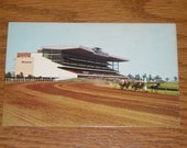 Unused Picture Postcard The Woodbine  Racetrack Toronto Ontario Canada