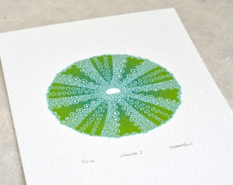 Sea Urchin / Echinoida I 'specimen' (pale) - Limited edition three-colour screenprint with hand-coloured details