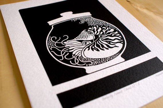 Curiosity Cabinet Series 3, No. 1 - Limited Edition Screenprint (Nautilus)