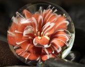 Pinkish Coral Striped  Floral Marble