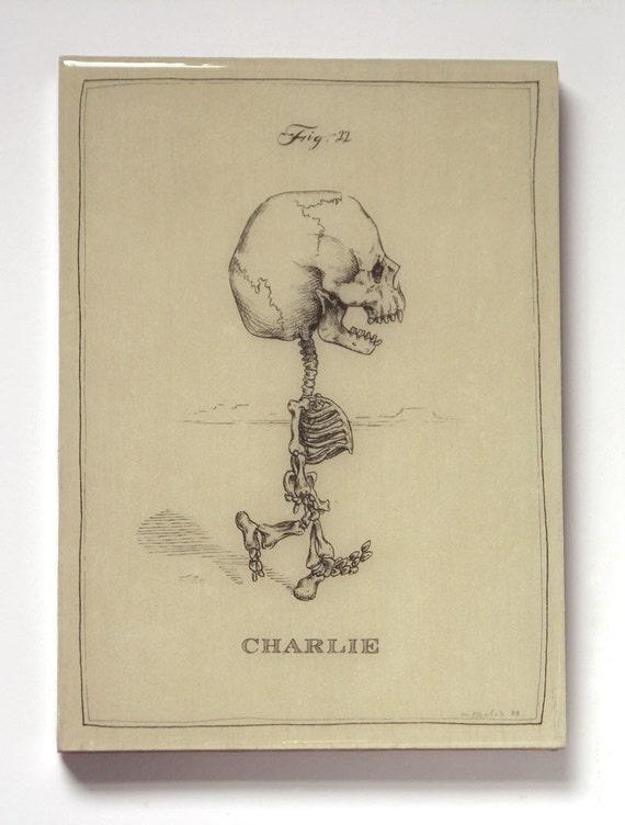 Charlie Brown Skeleton (Last One on Panel)
