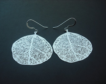 matte filigree leaf earrings- white gold plated and sterling silver ear wires
