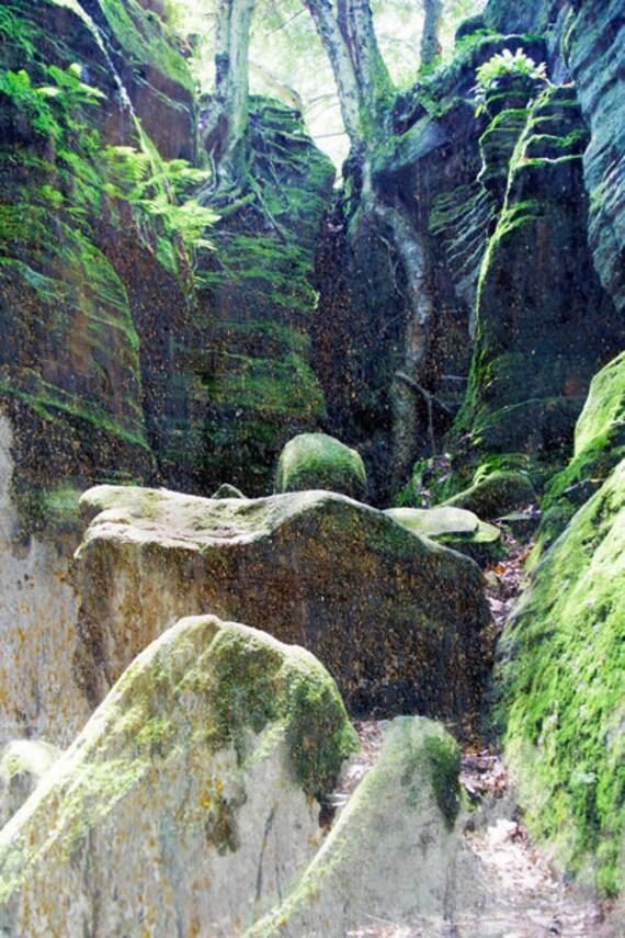 Oversized Art, Nature Landscape Giclee Print, Green Rocks, Forrest Prints, Dark Green, Lush green, Nature Photography