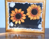Shadow box with Sunflowers and seashells