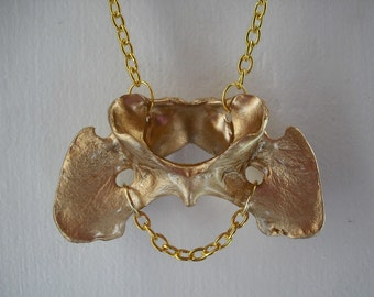TAXIDERMY COUTURE Stay Gold collection Coyote Vertebrae