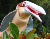 Hand puppet - Kasey the Kookaburra