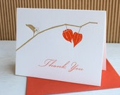 Letterpress thank you notes --  Physalis Chinese Lanterns (set of six)