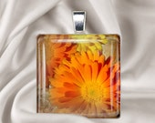 Cosmos October Birth Month Flower Plain- 1 inch glass tile pendant