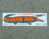 Saint Augustine Florida Alligator Farm vintage bumper sticker, gator, green, day glo orange, white, world's largest, 1893, roadside trip