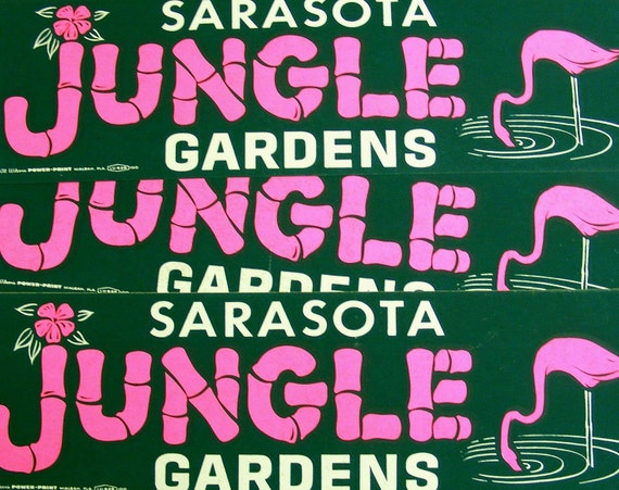 Jungle gardens sarasota florida vintage bumper sticker