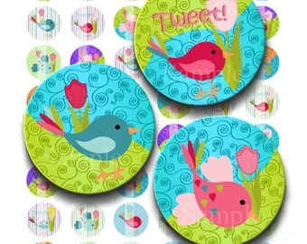 Instant Download - Little Birdies Tulips Collage Sheet - 1 inch circles bottlecaps pendants stickers tiles magnets 237