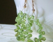 SALE-Earrings Peridot and GoldFilled, Green With Envy