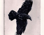 Raven artwork , Raven, crow,  etching 4 inch x 5 inch 2011