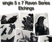 Raven collection. select any FIVE of my SINGLE 5 inch by 7 inch - 25% off- 47.50 dollar savings