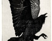 Raven artwork , Raven, crow, Three Legged Crow, etching 5 inch x 7 inch 2011