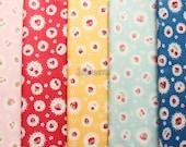 Small pieces of fabrics -  Lacy fruits by Atsuko Matsuyama