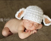 baby boy hat, baby girl hat, lamb beanie, lamb, photo prop, crochet newborn hat, baby shower gift, spring baby, coming home outfit
