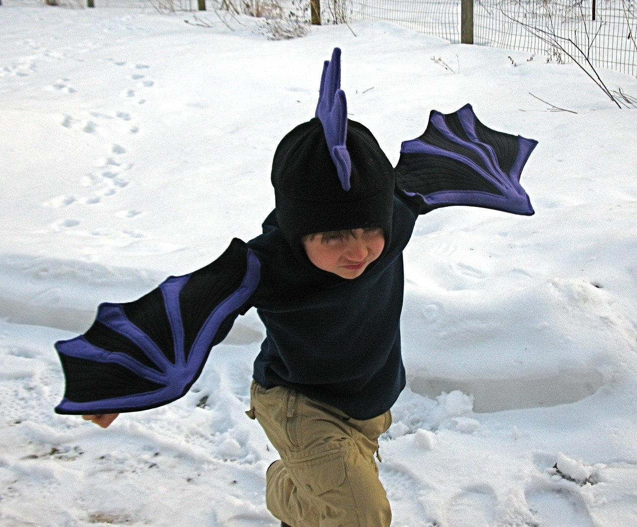 Black Dragon Wings for Imaginations in Motion Children - photo#22