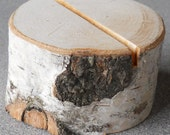 Birch Branch Rustic Table Number Holder Country Outdoor Natural Wedding Eco Friendly