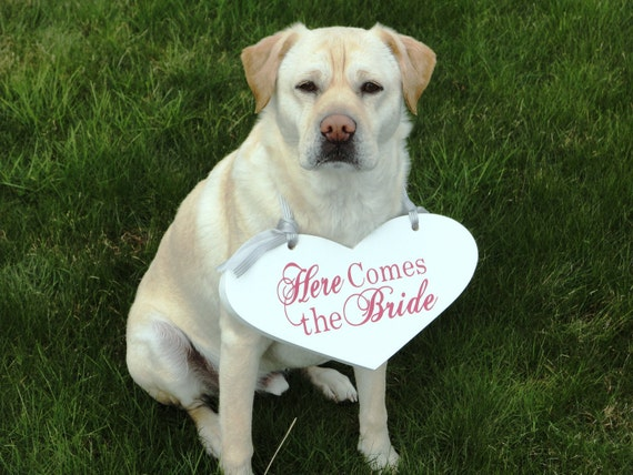 Dog Ring Bearer, Here Comes the Bride with Bride and Grooms Initials & Date.  11 1/2 X 14 1/2 in., 2-Sided.  Heart Bridal Sign. Flower Girl.