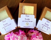 Spiced Spa Bar Soap-Sea Salt Soap-Handmade- Cold Process