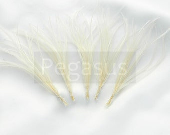IVORY Ostrich Feather (5 Sprays) Cruelty free DIY feathers for hair fascinators, boutonnieres, millinery,shoe clip,ostrich drab