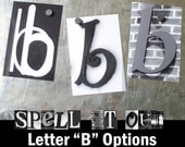 Lowercase Letter B Alphabet Art Options by Spell It Out