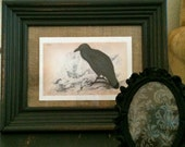 Raven - Spooky Halloween Picture - Crow - Vintage Frame Upcycled GHOULISH GRAY