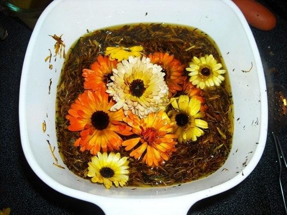 SALE 2oz  Organic Calendula Salve