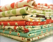 Early Bird by Cosmo Cricket for Andover Fabrics - 1/2 yard set