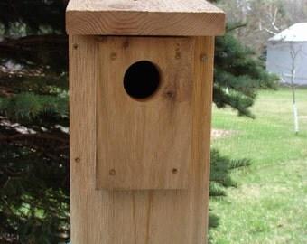 Western Cedar Eastern Bluebird Nest Box