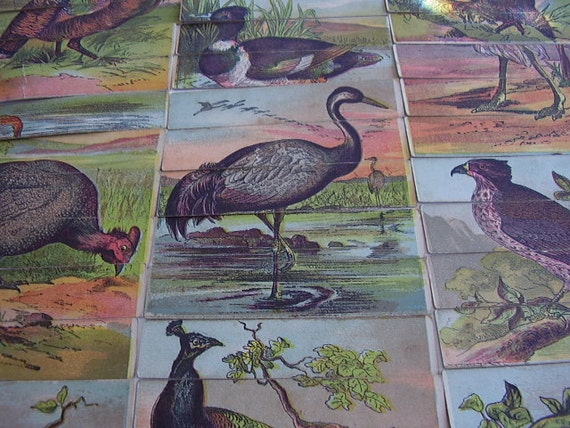 Antique Bird Puzzle Gem Birds