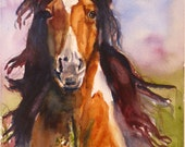 Mid Summer Dream Horse Watercolor Print by Maure Bausch