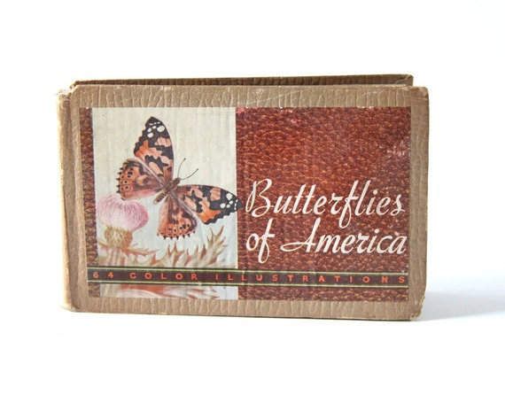 Butterflies and Moths Book of Prints - Gift for Mom or Daughter