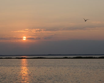 Photo Print - Late summer sunset over the Bay - birds flying home - Going Home