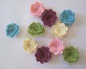 WOOL Felt Flowers-Enchanted Garden Collection-Felt Posie-Felt Rosette