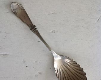 Antique Silver Shell Sugar Spoon