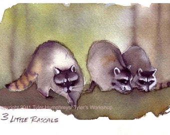 Raccoon Art, Raccoons Watercolor Painting Illustration Print  'Three Little Rascals'
