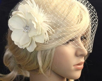 Ivory Birdcage Veil - 2 items