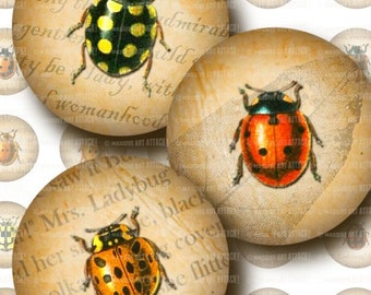 Ladybug Illustrations with Vintage Text  & Leaf Skeletons . Digital Collage Sheet 189 . 1 inch circles