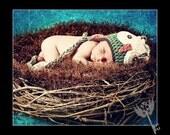 Nest Pod Bowl, Hand Crocheted Newborn Baby Photography Prop