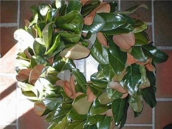 LORI TISSUE order Magnolia Leaf Wreath Fresh Cut