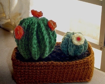 Cactus Garden-INSTANT DOWNLOAD Crochet Pattern