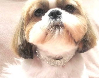 Dog Cat Pet rhinestone collar chain
