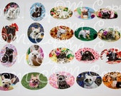 French Bulldog Stickers - French Bulldog Package Stickers - French Bulldog Puppy Assorted Stickers - Pack of 12 Stickers