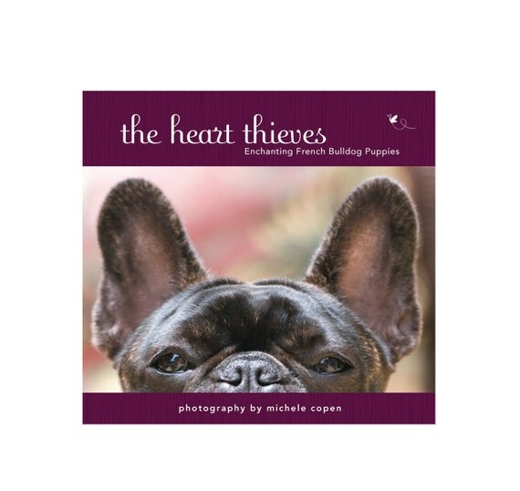 french bulldog book french bulldog book the heart thieves enchanting french 5695