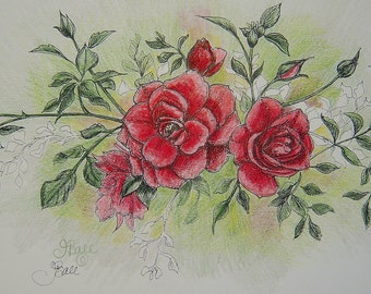 ROSES IN ROSE - Hand Colored Botanical Print 11 x 14