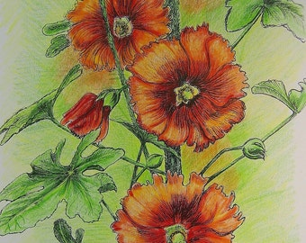 SUMMER HOLLYHOCKS - Hand Colored Botanical Print 11 x 14