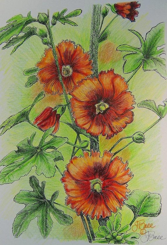 SUMMER HOLLYHOCKS - Hand Colored Botanical Print 11 x 14
